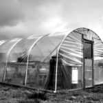 Middleport Allotments d 27